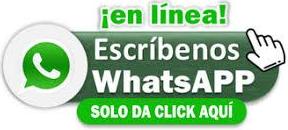 en-linea-whatsapp.jpg